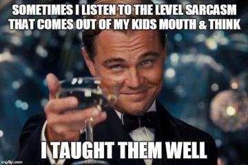 Sarcasm meme