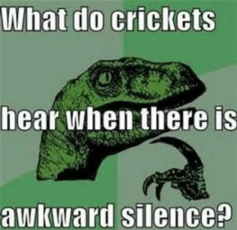 Cricket meme