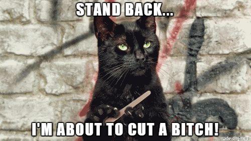 Cut a bitch meme
