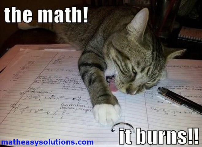 m96-cat-hates-math-burns